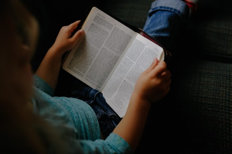 https://www.educfrance.org/wp-content/uploads/2019/12/lecture-enfant-768x511-1.jpg