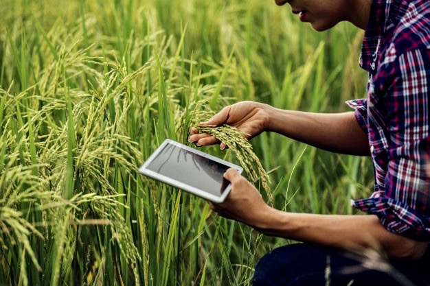 https://www.educfrance.org/wp-content/uploads/2020/02/agriculteur-debout-dans-riziere-tablette_1150-6062.jpg