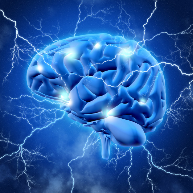 https://www.educfrance.org/wp-content/uploads/2020/02/cerveau-3d-eclaircissement_1048-11388.jpg
